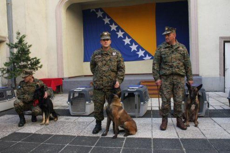 Handover of seven mine detection dog teams to the Armed Forces of BiH