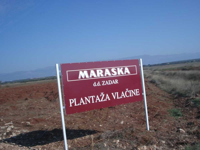 MARASKA – SUCCESSFUL STORY IN CLOSE COOPERATION BETWEEN PRIVATE AND PUBLIC SECTOR