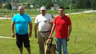 Mine detection dogs trained and handed over to Lebanon Mine Action Centre