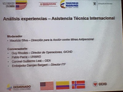 Analysis of Experiences and International Technical Assistance